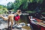 Sapa wilderness canoe camping in the BWCA on the boarder of Canada/MN.  Our dog Yeti carries her own pack on the portage